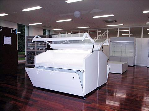 0104 美術館ケース スチール製 MT型 / 覗きケース 傾斜型